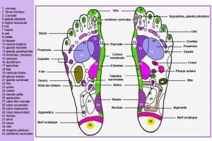 carte-reflexologie-plantaire